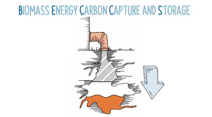 Ideas and insights: Bioenergy Carbon Capture andStorage